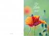 Bestattungsinstitut Rose Trauerdruck, EP 402