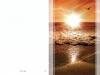 Bestattungsinstitut Rose Trauerdruck, EP 403