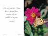 Bestattungsinstitut Rose Trauerdruck, Ravena 52v